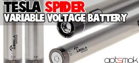 tesla-spider-variable-voltage-battery-gotsmok