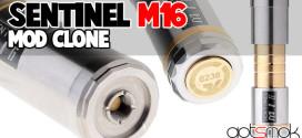 sentinel-m16-mod-clone-gotsmok