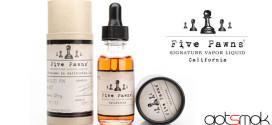 vaporcigzz-five-pawns-e-liquid-gotsmok