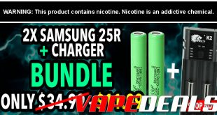 Samsung 25R Bundle: 2x Batteries & Charger $11.99