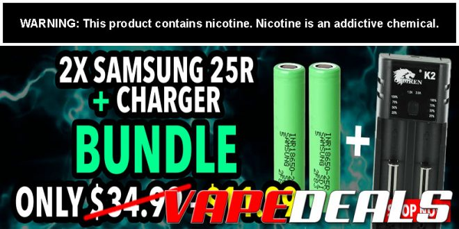 Samsung 25R Bundle: 2x Batteries & Charger $11.99